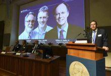 Photo of فوز عالمين أميركيين وبريطاني بجائزة نوبل للطب لعام 2019