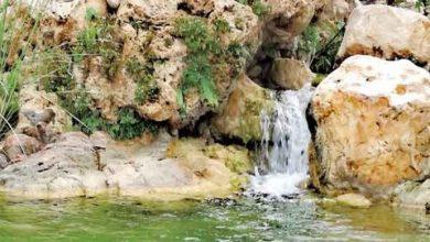 Photo of وادي شـليـون… مـتـحـف الكـنـوز الطـبـيعـية