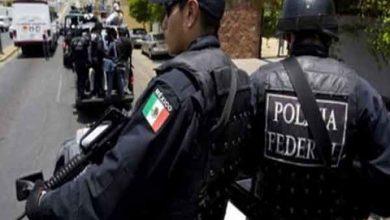 Photo of مقتل 14 شرطياً في هجوم مسلّح في غرب المكسيك