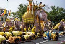 Photo of مسيرة أفيال لتحية الملك الجديد في تايلاند