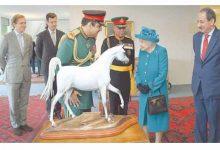 Photo of الخيالة السلطانية تختتم مشاركتها في عرض «ويندسور الملكــي» للخيول