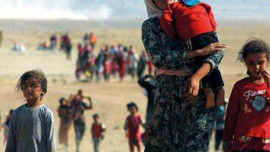 Photo of الأقليات في العراق مهددة بالإبادة على يد «داعش»