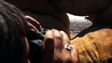 Photo of سنجار العراقية على مرمى حجر من «البشمركة»… ماذا ينتظرون لاستعادتها؟!