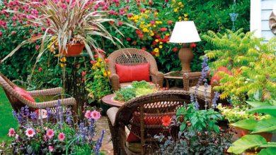 Photo of إجعل حديقة منزلك الصغيرة جنّتك الكبيرة… بخمس خطوات