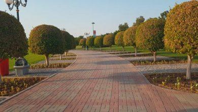 Photo of حدائق الصحوة بولاية السيب في سلطنة عمان وجهة للترفيه