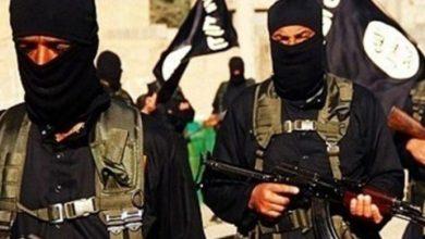 Photo of واشنطن تحذر من تأقلم داعش مع الهزائم وتحوله للامركزية والمعركة لم تنته بعد