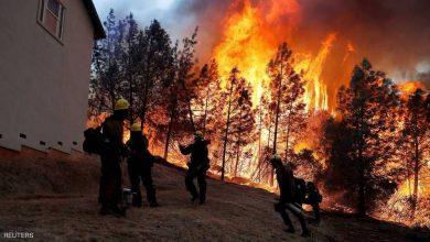 Photo of 600 رجل إطفاء يكافحون حريقاً في كاليفورنيا