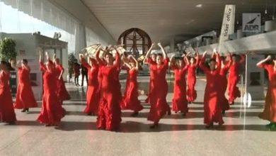 Photo of عرض راقص في اليوم العالمي للقضاء على العنف ضد المرأة في ايطاليا