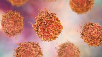Photo of سرطان البروستاتا: علاج مناعي جديد يعطي أملاً للرجال المصابين
