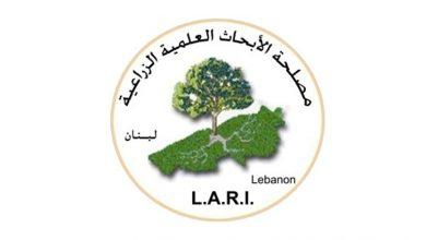 Photo of الابحاث الزراعية: صقيع في البقاع والقاع بدءاً من الثلاثاء