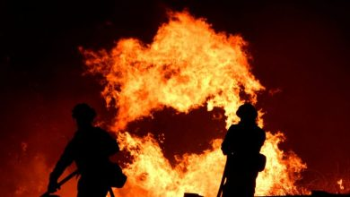 Photo of مقتل 13 باكستانياً في حريق بمزرعة في غور الأردن