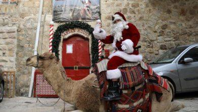 Photo of بابا نويل يمتطي جملاً ويوزع أشجار عيد الميلاد في القدس