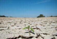 Photo of التغير المناخي: «ارتفاع غير مسبوق» في درجات الحرارة خلال السنوات العشر الأخيرة