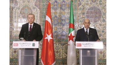 Photo of الرئيسان الجزائري والتركي: «التوافق التام» حول الأزمة في ليبيا