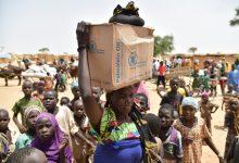 Photo of مصرع 20 شخصاً في عملية توزيع مساعدات في النيجر