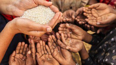 Photo of هل يتجه العالم نحو أزمة غذاء بسبب وباء كورونا؟