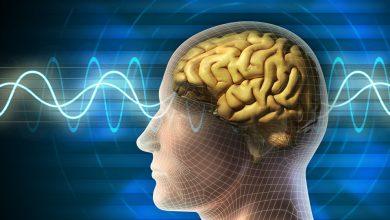 Photo of آلات تحوّل إشارات المخ إلى عبارات مفهومة