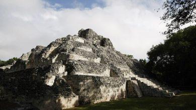 Photo of اكتشاف أقدم وأكبر بناء لحضارة المايا القديمة في المكسيك
