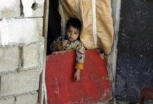 Photo of منظمة دولية تحذر من موت أطفال جوعاً في لبنان بحلول نهاية العام