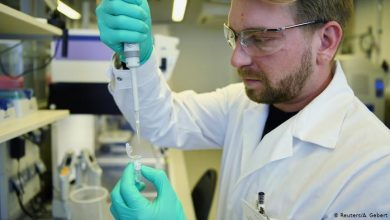 Photo of تجارب على لقاحين ضد كوفيد-19 تظهر وجود «استجابة مناعية»