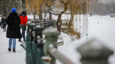 Photo of الثلج والبرد القارس يحدثان حالة من الفوضى في ألمانيا وبريطانيا