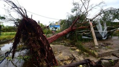 Photo of الإعصار هنري يقترب من اليابسة في الساحل الشرقي للولايات المتحدة واعلان حالة الطوارىء